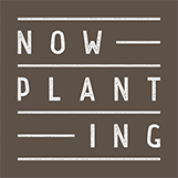 now-planting